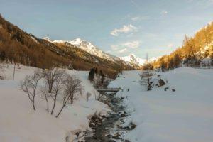 Auf Ötzis Spuren – Indi auf Schneeschuhtour im Schnalstal